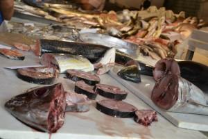 taliansko-ryby